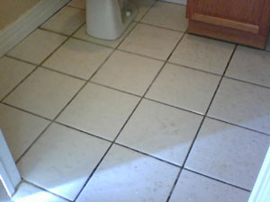 Grout stains go down deep where ordinary houshold cleaners and tools can't perform